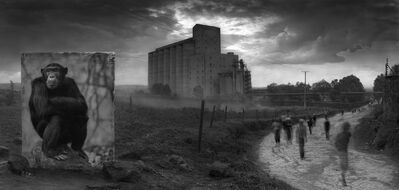 Nick Brandt, 'Factory with Chimpanzee', 2014