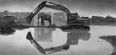 Nick Brandt, 'Quarry with Elephant', 2014