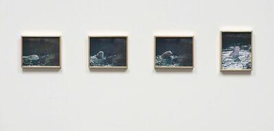 Elad Lassry, 'Porpoise', 2013