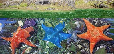Joice M. Hall, 'Sea Star, Burnaby Narrows', 2016-2018