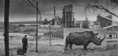 Nick Brandt, 'Factory with Rhino', 2014