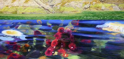 Joice M. Hall, 'Anenomes & Lions Mane Jelly Fish, Burnaby Narrows', 2016-2018