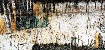 Lori Van Houten, 'Borderline (Markings)', 2007