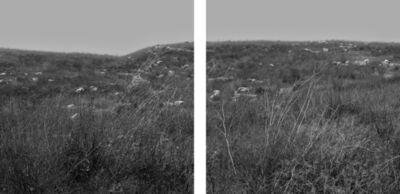 Dorian Gottlieb, 'Forest (dyptich)', 2016