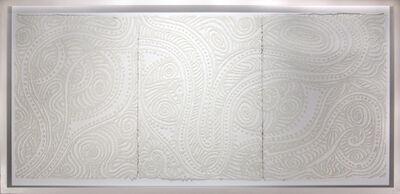 Christopher Tanner, 'Albino Desert', 2008