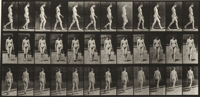 Eadweard Muybridge, 'Plate 13 from Animal Locomotion', c. 1887