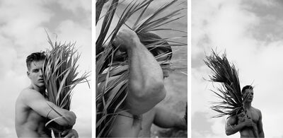 Ricky Cohete, 'Palm embrace, Palm Three and Four, Set from the Nostalgia series', 2017