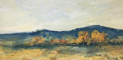 Theodore Waddell, 'Spanish Peaks Willows', 2003