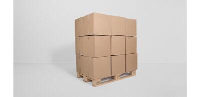 Zimoun, '36 prepared dc-motors, cardboard boxes 40x40x40cm, palette', 2013