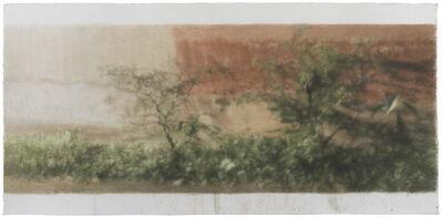 Kang Haitao 康海涛, 'Hidden Scenery 隐匿之景', 2015