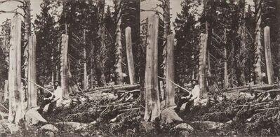 Danh Vō, 'Snowfall, northern Sierras, 1847', 2014