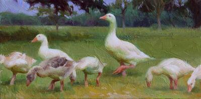 Adrienne Stein, 'Oxford Geese', 2021