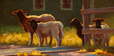 "Cheri Christensen, '""Free Range"" oil painting of brown and white sheep in yellow grass with backlighting', 2018"