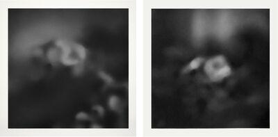 Irene González, 'Untitled (diptych)', 2020