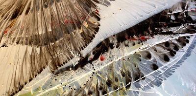David Ryan Lopez, 'Butterflies', 2006
