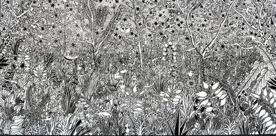 M.S. BASTIAN & ISABELLE L., 'Paradis Fabuleux En Blanc Et Noir'