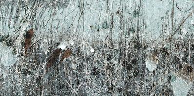 Lori Van Houten, 'Field Notes (White Nettle)', 2006