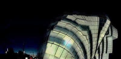 Richard Raderman, 'Frank Gehry IAC Building'