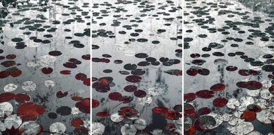 Santeri Tuori, 'Water Lilies 19', 2019