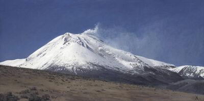 Guillermo Muñoz Vera, 'Volcán Guallatiri (del Norte)', 2006
