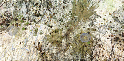 Lori Van Houten, 'Field Notes (Seedfall)', 2006