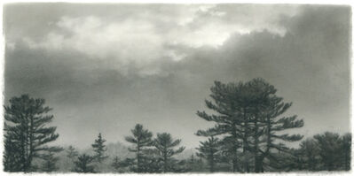 Dozier Bell, 'Pine, clearing sky', 2015