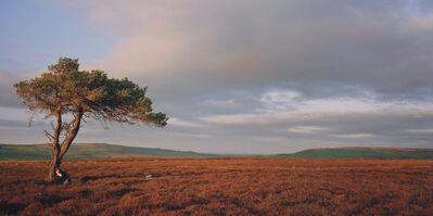 Sarah Michael, 'Burn Howe Rigg', 2007