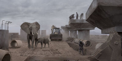 Nick Brandt, 'Bridge Construction with Elephants & Excavator', 2018