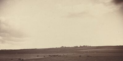 'View of Fields with Cows', 1850s-1860s