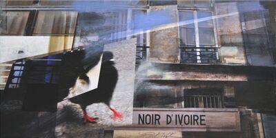 Paul Kirley, 'Noir d'Ivoire', 2012