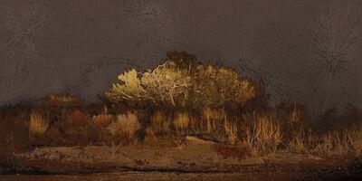 Aziz + Cucher, 'Scenapse #8 (Desert Nocturne)', 2010