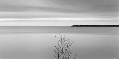 Brian Kosoff, 'Tree, Lake Superior', 2007