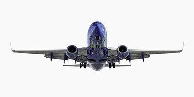 """Jeffrey Milstein, 'Southwest Airlines Boeing 737-700 """"Nevada One', 2013"""