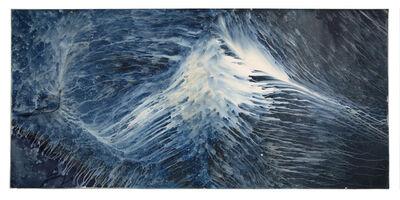 Meghann Riepenhoff, 'Ecotone #904 (Bainbridge Island, WA 07.03.20, Draped on Big Leaf Maple Stump, Steady Rain)', 2020