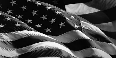 Robert Longo, 'Untitled (Flag) ', 2013