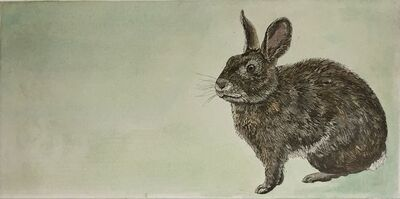 Julia Lucey, 'Brush Rabbit', 2014