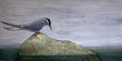 Nora Charney Rosenbaum, 'Arctic Tern', 2020