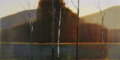 Stephen Pentak, '2012, IV.IV', 2012