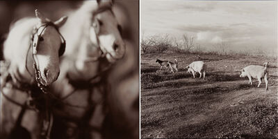 Keith Carter, 'Two works of art'