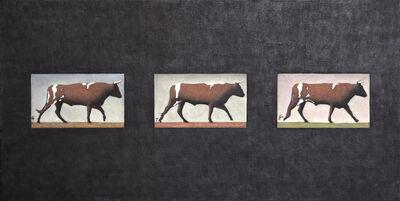 Andrew Nixon, 'Oxen 6-7-8', 2013