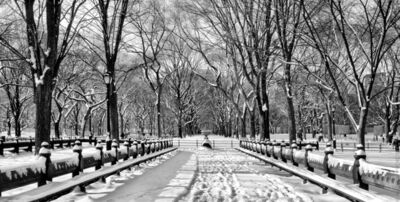 Andrew Prokos, 'Central Park Benches in Winter', ca. 2011