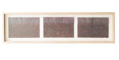 Àngels Ribé, 'Untitled', 1984