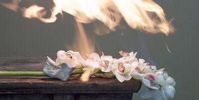 Jiang Zhi 蒋志, 'Love Letters No. 30', 2014
