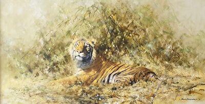 David Shepherd, 'Glorious Tiger', 1975
