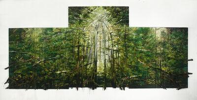 Sharon Kopriva, 'Cathedral Green', 2012