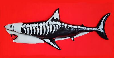 Enrico Cecotto, 'Skeleton Shark', 2019