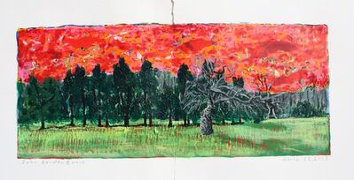 John Borden Evans, 'Old Apple Tree Diptych', 2018