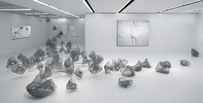 Stella Zhang, 'Translution', 2018