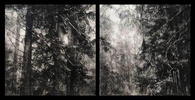 Robin Cole, 'Hypatias Woods II', 2017