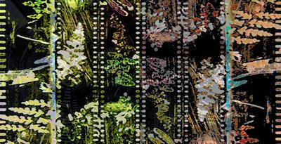 Donna Cameron, 'Spring & Autumn'